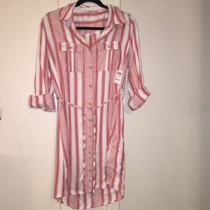 Charlotte Rousse button up collared dress